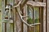 Window, Historic Buckner Orchard