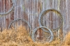 Coils of Wire on wall, Historic Petersen Farm, Silverdale Washington