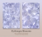 Lime Light Hydrangea in cool tones set of two - 50.6 mp