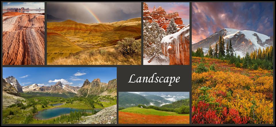 https://www.donpaulson.com/cms/galleries/nature/landscapes-2/