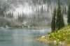 Canada; British Columbia; Revelstoke National Park; Lake Eva