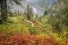 Washington; Mount Baker Wilderness; Heather Meadows; Bagley Lakes