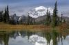 Washington; Mount Rainier National Park; Chinook Pass