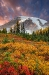 Paradise at Mount Rainier