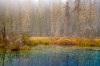 Oregon; Mount Hood National Forest; Little Crater lake
