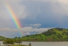 Rainbow - California, Black Butte Lake