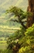 Oak Tree over the Columbia River, Washington