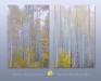 Foggy Aspen Forest Set of two