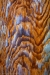 Painterly rendition of wood grain. Photographed at 50.6 megapixels