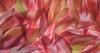 Dahlia Petals #6459