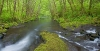 Nestucca River, Oregon