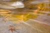Arizona; Tucson; Coronado National Forest; Remero Pools