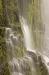 Oregon; Willamette National Forest; Proxy Falls