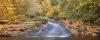 Oregon; Lake Creek; fall color
