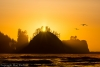 Golden sunset - Washington Coast, La Push, James Island.